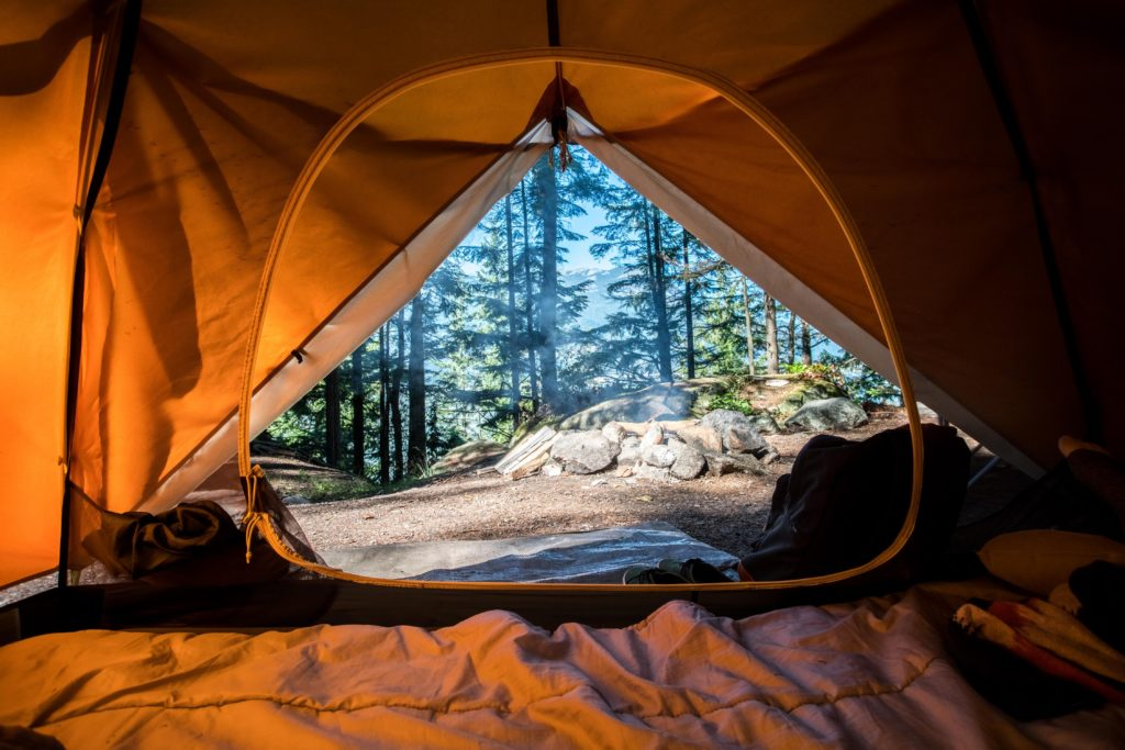camping tick removal lyme disease