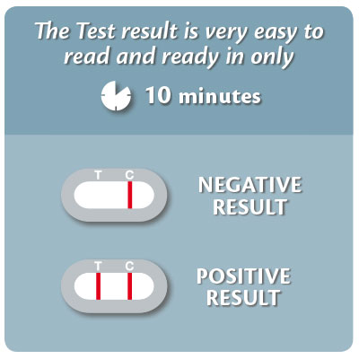 Allergy Test For Dogs Kit Uk
